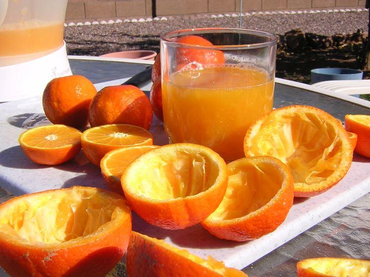 Spremuta di arancia casalinga