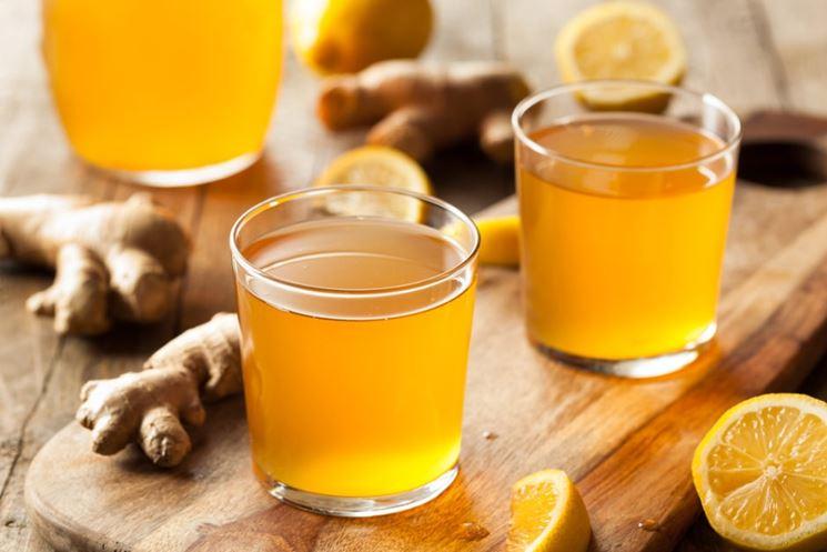 Bevanda al ginger biologico