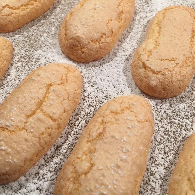 Biscotti savoiardi bio