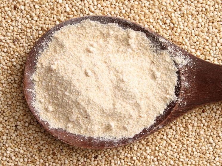 Farina quinoa