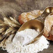 Farina di tipo 0 e spighe di grano tenero bio