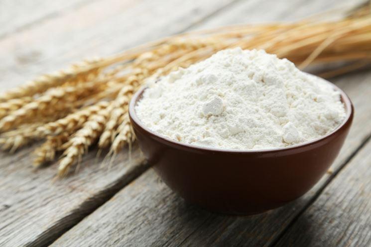 Farina biologica di grano