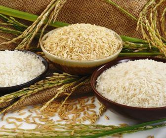 Pasta e riso biologico