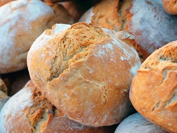 Pane con semola di grano