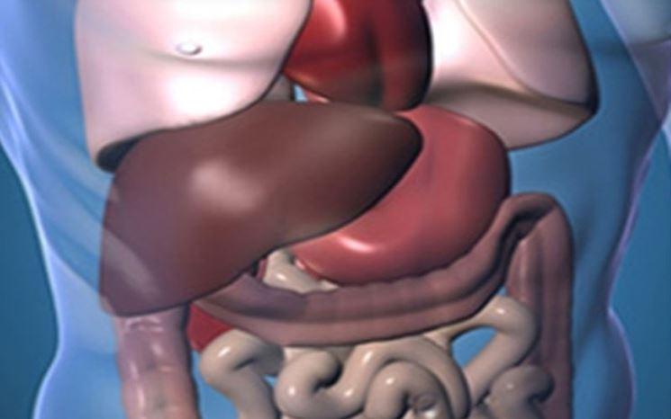 La gastroscopia per analizzare l'intestino
