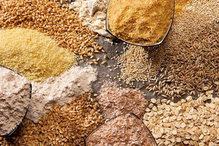 Varie tipologie di cereali