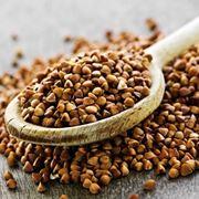 Semi di grano saraceno