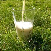 Latte senza glutine