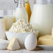 Latte e i suoi derivati