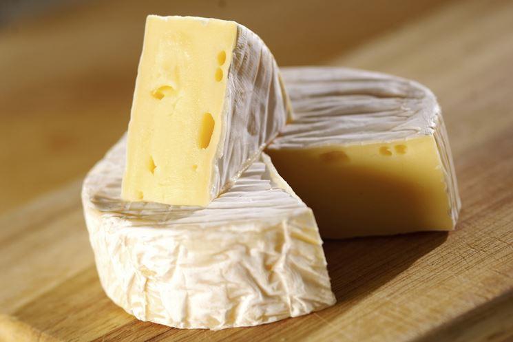 Forma di formaggio camembert