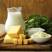 Latte e prodotti derivati