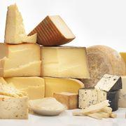 Varie tipologie di formaggi
