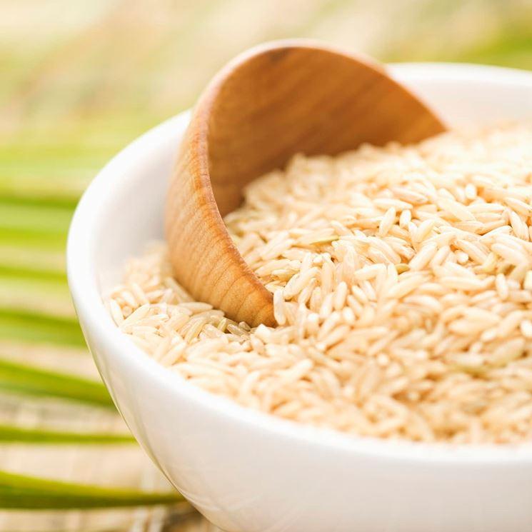 Il riso è una pianta delle graminacee