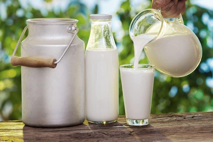 L'intolleranza al latte vaccino è molto diffusa